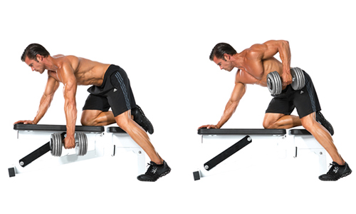 Best home weight benches back workouts