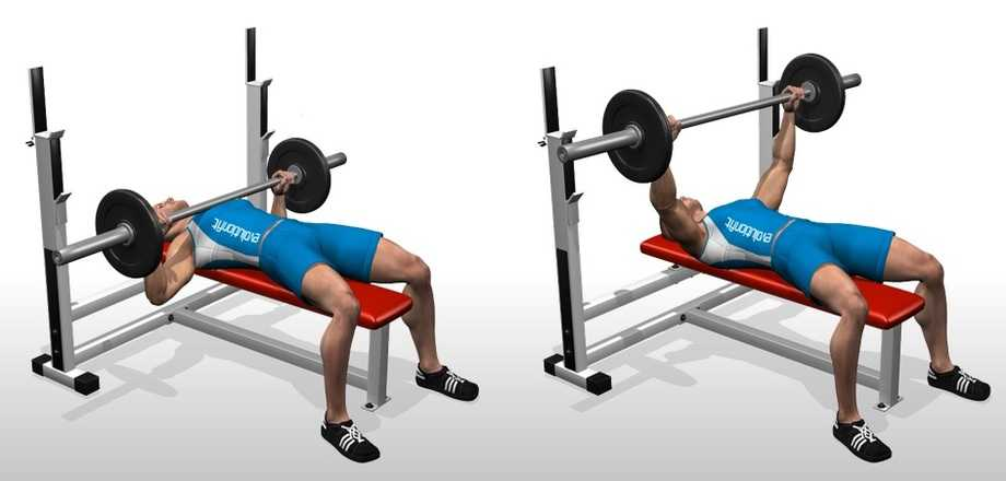 flat dumbbell incline bench press with barbell workout